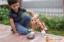 Интерактивная игрушка Peppy Pets Веселая прогулка Бассет 28 см (245277) 2